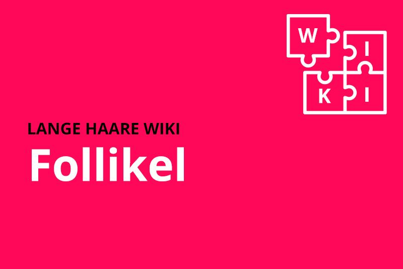 lange haare wiki Follikel